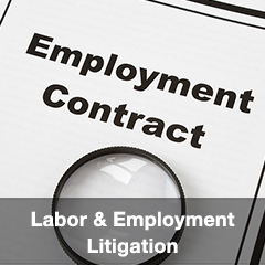 Labor & Employment Litigation